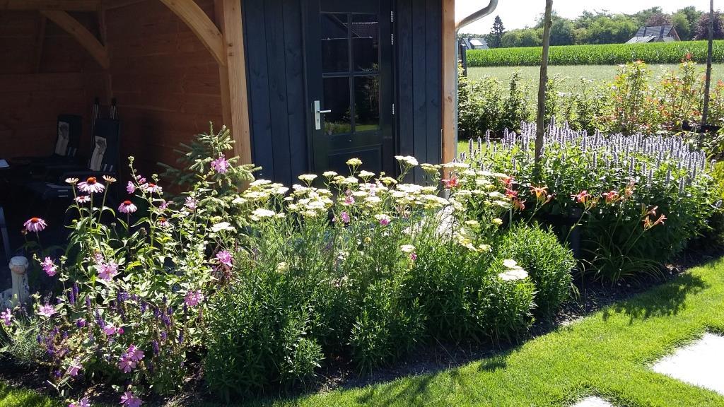 Buytengewoon tuinontwerp hovenier hoveniernederland